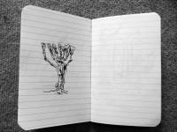 5_leuchterbaum.jpg